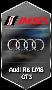 Package_IMSA_Audi